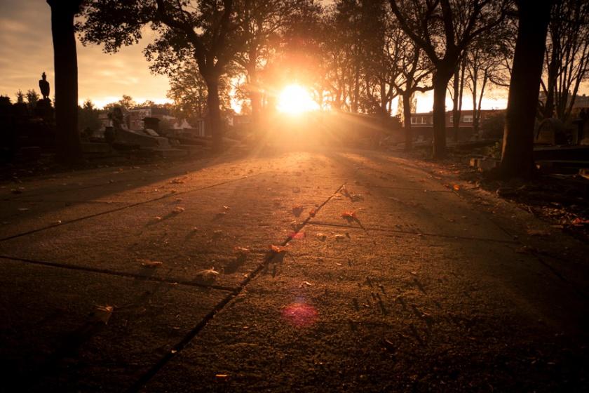 Autumn Fantasy : Lumière dans le cimetière (Robermont) - Photo : Gilderic