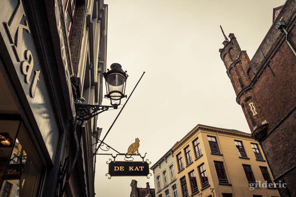 """Enseigne """"De Kat"""" à Bruges (Belgique), dans le centre historique - Photo"""