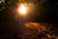 Autumn Fantasy : The Power of the Sun (Photo : Gilderic)