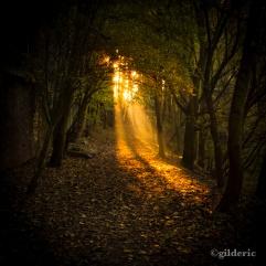 Autumn Fantasy : Autumn Magic (Photo : Gilderic)