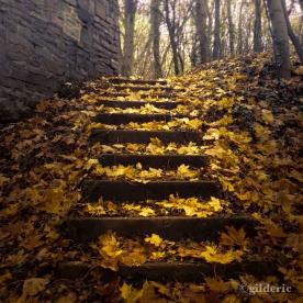 Autumn Fantasy : The Fall of the Usher House... (Photo : Gilderic)