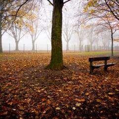 Autumn Fantasy : Deux Bancs dans la brume (Photo : Gilderic)