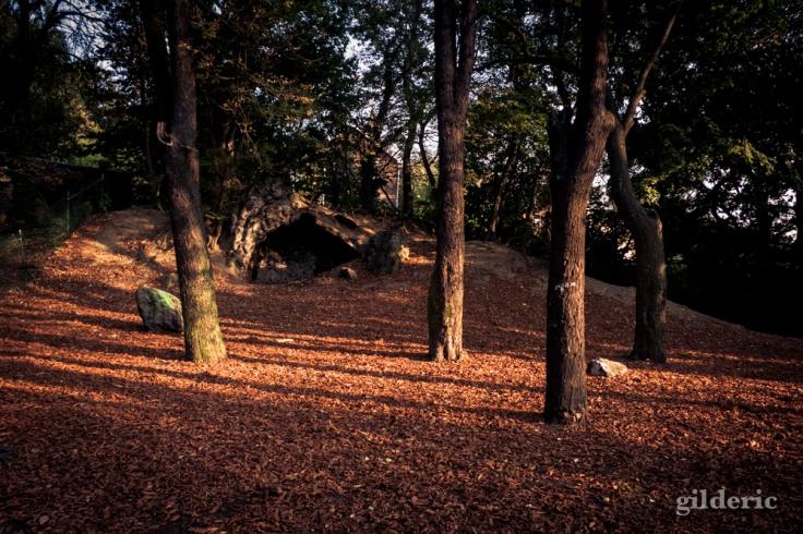 La Grotte - Bois des Oblats - Photo : Gilderic