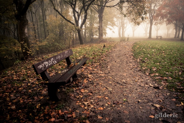 Autumn Fantasy : Graffitis, banc et brume - Photo : Gilderic