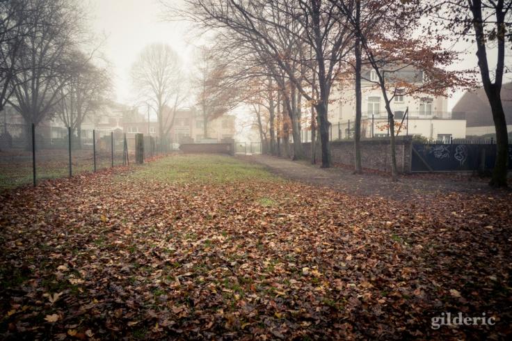 Autumn Fantasy : derrière le portail - Photo : Gilderic