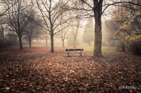 Autumn Fantasy : Le banc des mystères - Photo : Gilderic