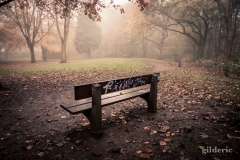 Autumn Fantasy : Graffiti dans la brume - Photo : Gilderic