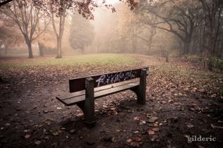 Autumn Fantasy : Graffiti dans la brume - Photo : Gilderic