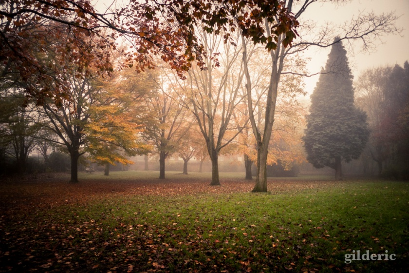 Autumn Fantasy : dans le parc - Photo : Gilderic