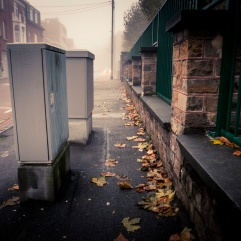 Fin d'automne (Grivegnée) - Photo : Gilderic