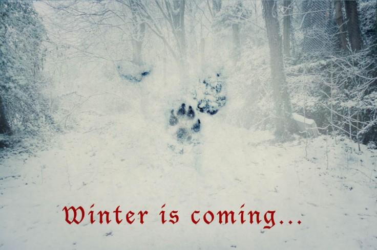 Winter is coming - Photo-montage de Gilderic