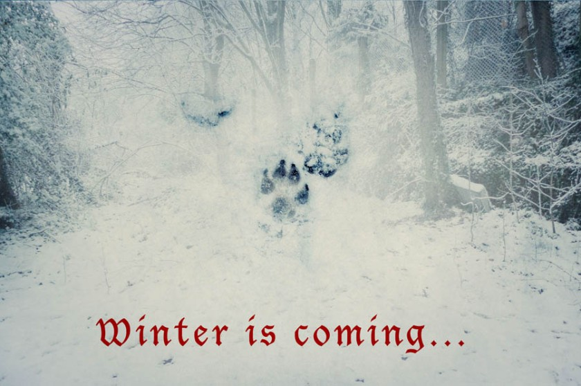 Winter is coming - Photo-montage de Gilderic
