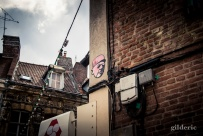 The General is Watching You- Lille - Photo : Gilderic