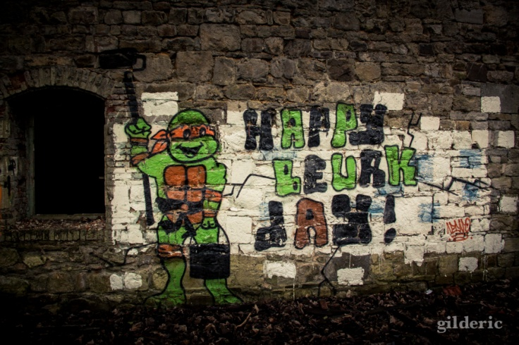 Graffiti Tortue NInja Fort de la Chartreuse (Liège, Belgique) - Photo : Gilderic