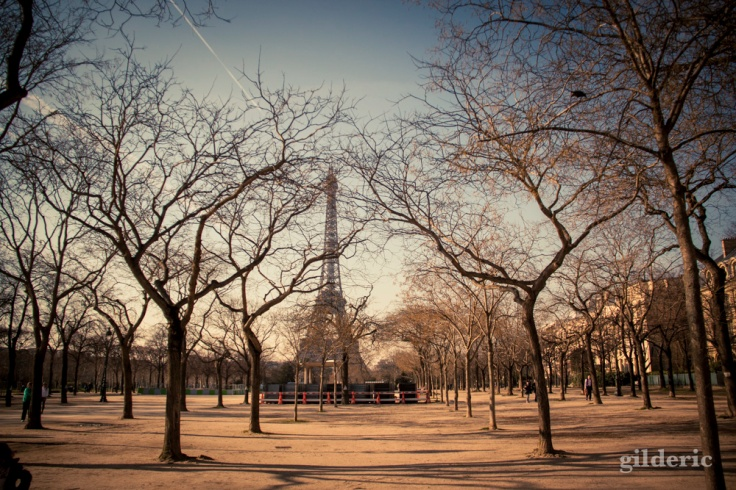 Printemps à Paris : Champs de Mars , arbres et Tour EIffel