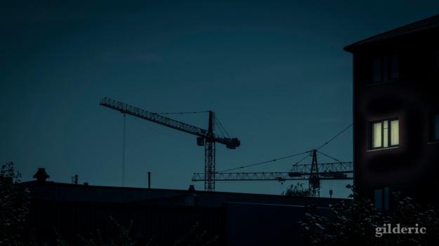 La guerre des grues... (Liège, Belgique) - Photo : Gilderic