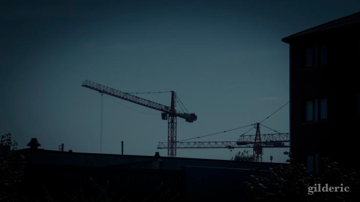 Grues sur Liège (photo en traitement) -