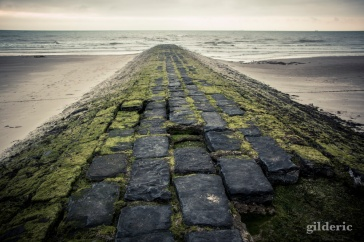 Until the End (Blankenberge) - Photo : Gilderic