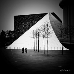 Couple Philharmonie (Luxembourg) - Photo : Gilderic