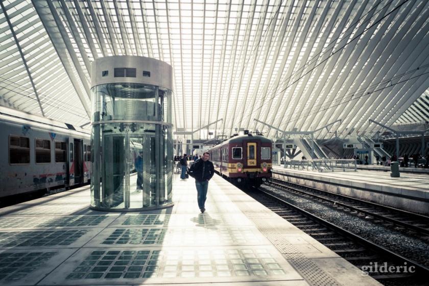 Le retour d'Ulysse (Gare de Liège-Guillemins) - Photo : Gilderic