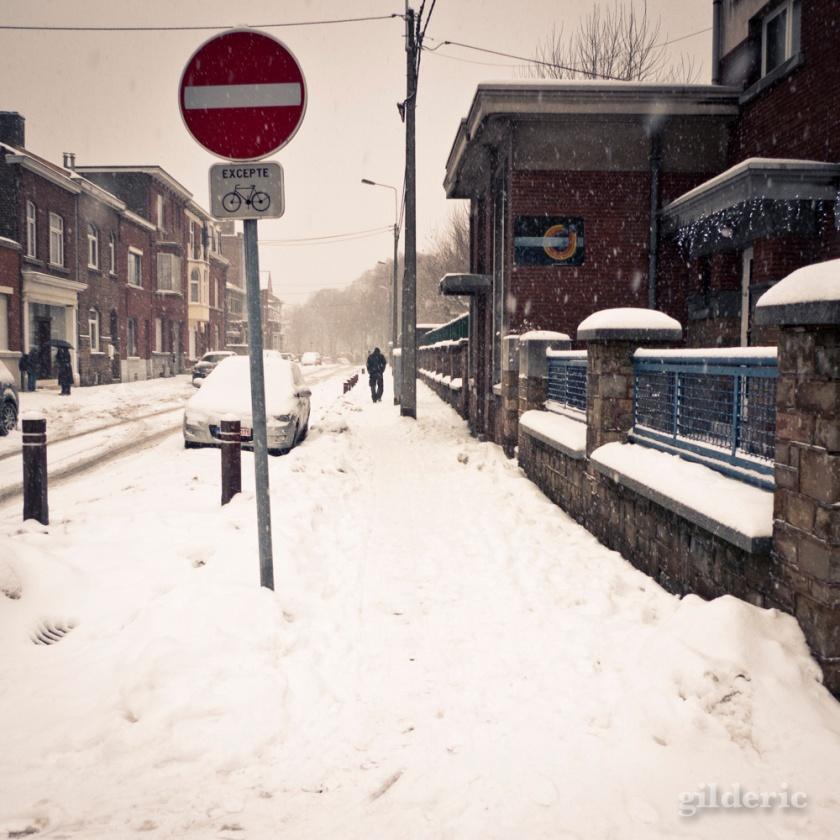 Neige interdite (Grivegnée, Belgique)  - Photo : Gilderic