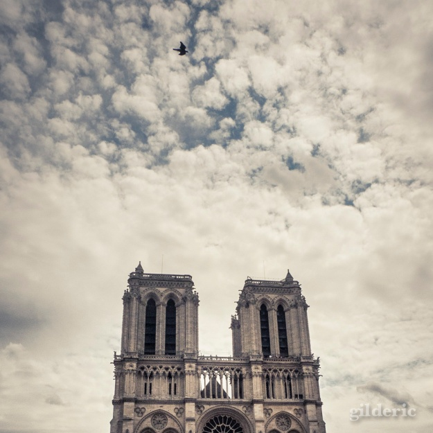 Notre-Dame de Paris - Photo : Gilderic