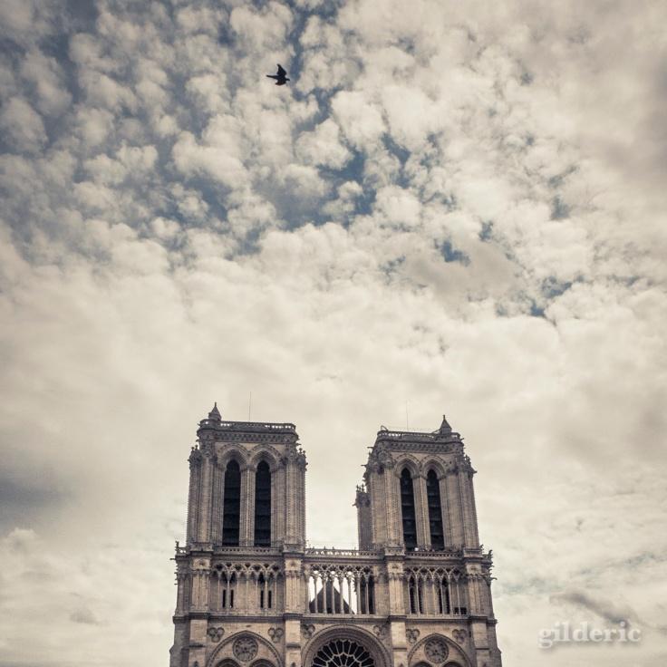 Notre-Dame de Paris - Photo : Gilderic