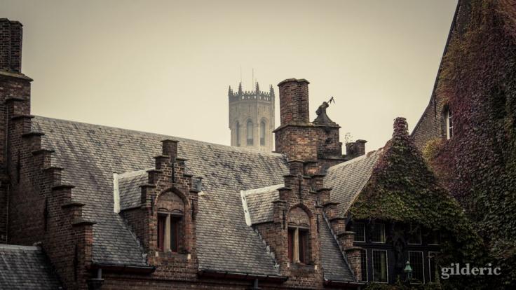 Bruges dans la brume - Photo : Gilderic