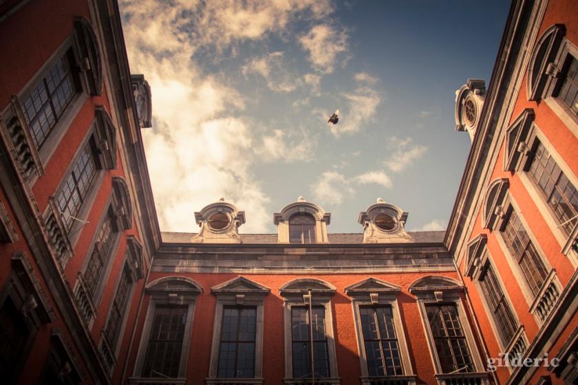 Hôtel de ville de Liège - Photo : Gilderic