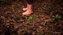 Hello Kitty dans les bois...