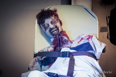 FACTS 2014 - Walking Dead prop zombie - photo : Gilderic