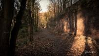Domaine de la Chartreuse (en automne) -Photo : Gilderic