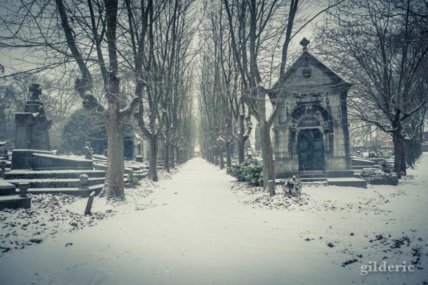 Photographier la neige (Cimetière de Robermont, Liège) - Photo : Gilderic