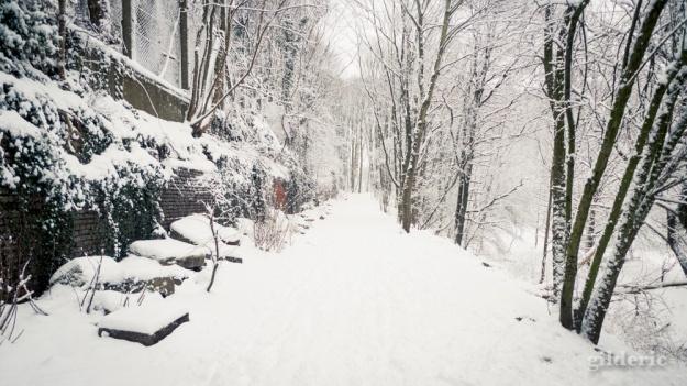 Photographier la neige (exposition) - Photo : Gilderic