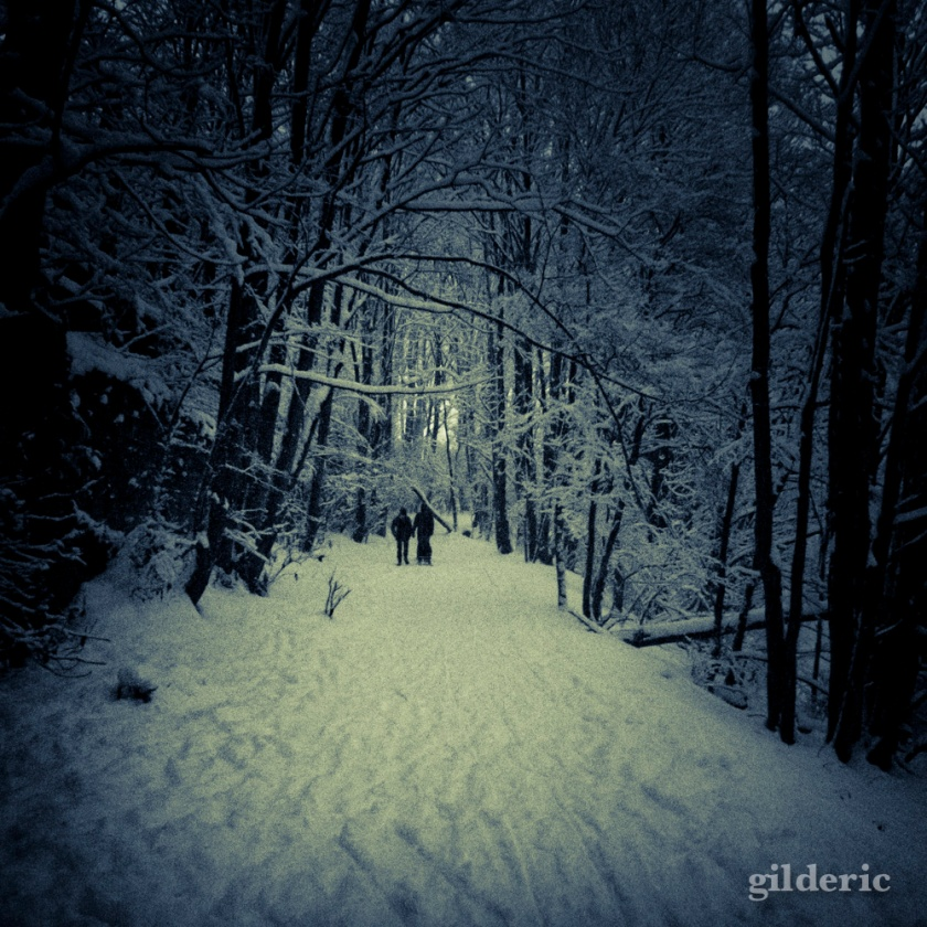 Photographier la neige (laChartreuse, Liège) - Photo : Gilderic