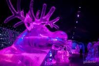 Sven (la Reine des Neiges) - Disneyland Ice Dreams - Photo : Gilderic