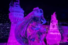 Raiponce - Disneyland Ice Dreams - Photo : Gilderic