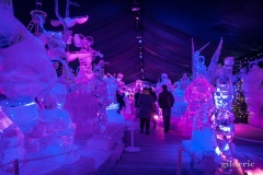 Disneyland Ice Dreams - Photo : Gilderic