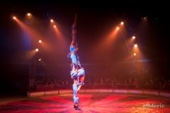 Acrobates - Festival Européen du Cirque Liège