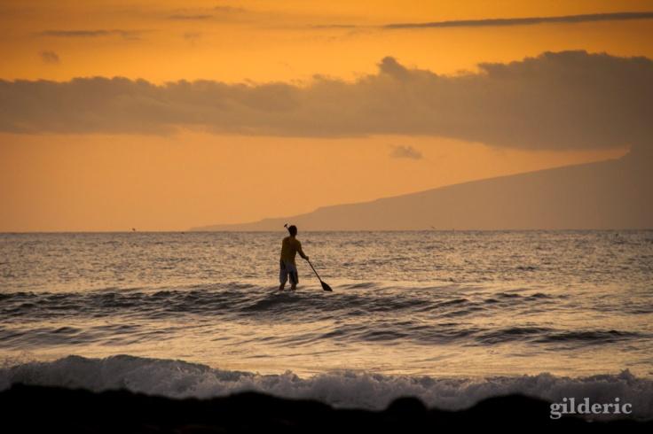 Surfer au crépuscule (Ténérife) - Photo : Gilderic