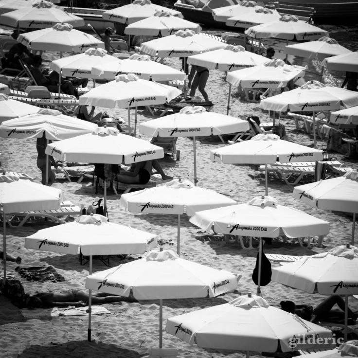 Champ de parasols sur la plage (Bulgarie) - Photo : Gilderic