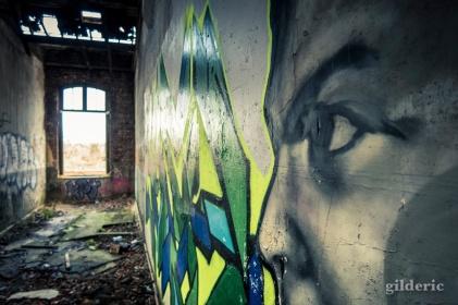 Un oeil vert vous regarde - Fort de la Chartreuse