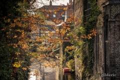 Le charme de Bruges en automne