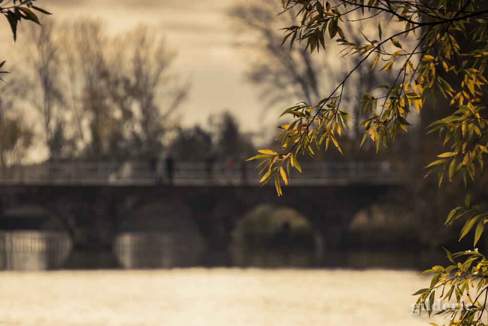 Le Minnewater de Bruges en automne