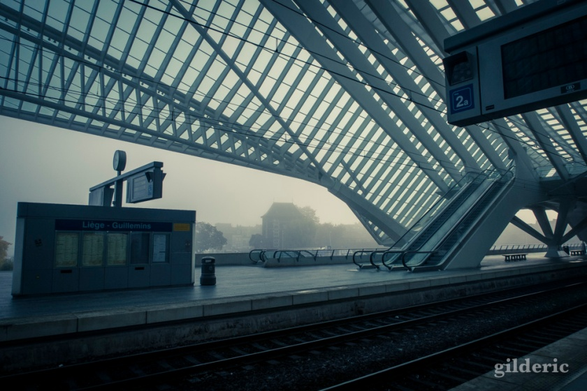 Gare de Liège-Guillemins dans le brouillard