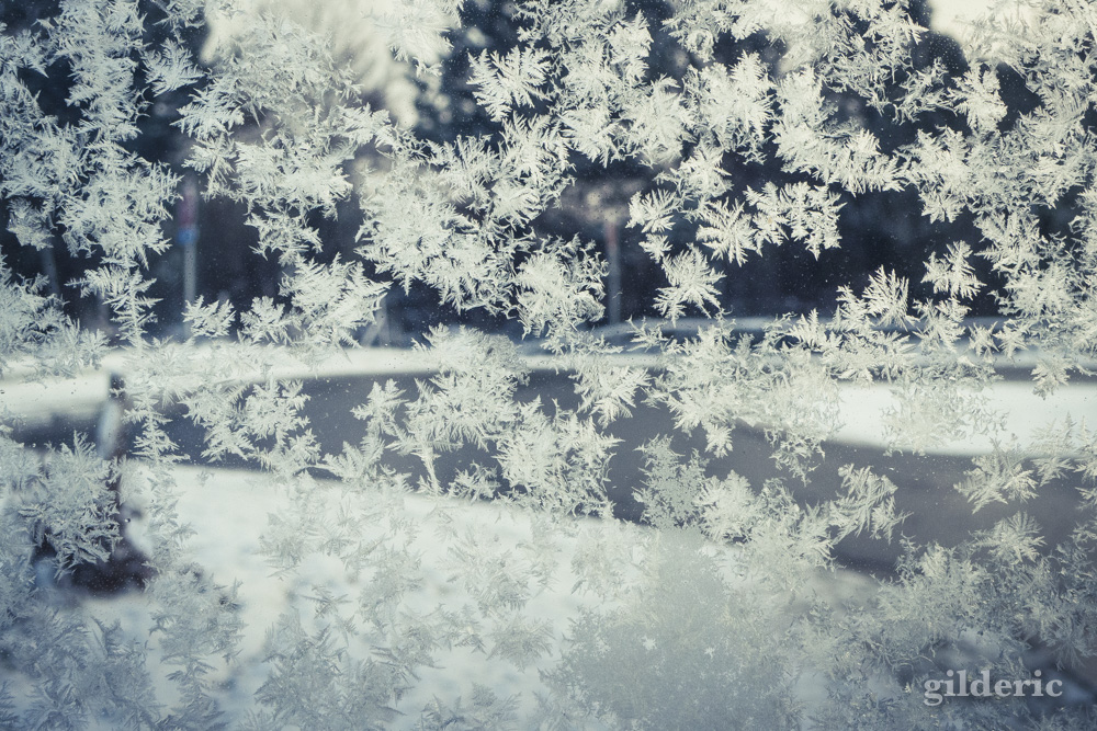 Foyer Grand Froid : Hiver imagier