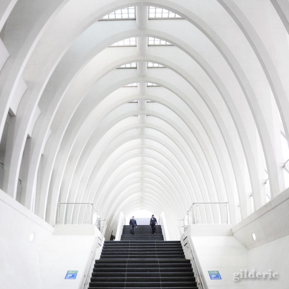La Gare de Liège-Guillemins