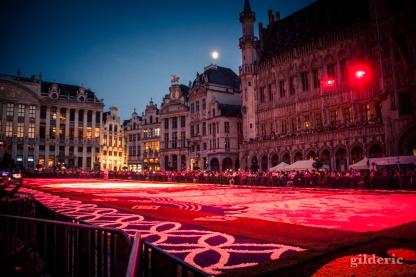 Le tapis de fleurs de la Grand-Place (Bruxelles)