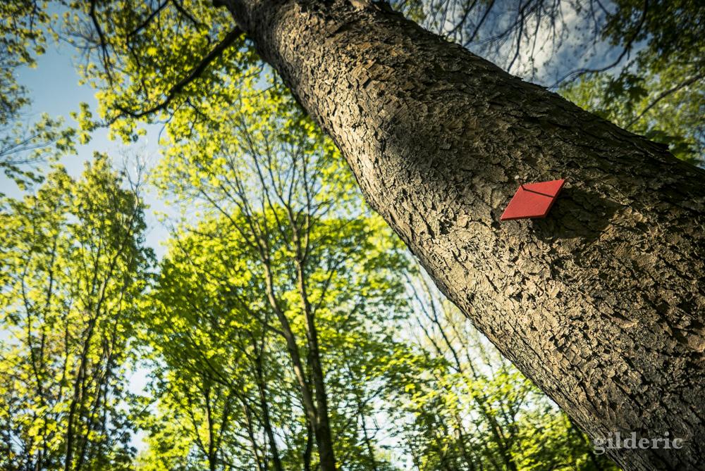 Mise au vert : comment bien profiter d'un jour férié?