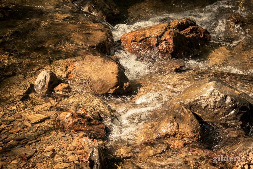 Jour férié au bord du ruisseau (Ninglinspo)